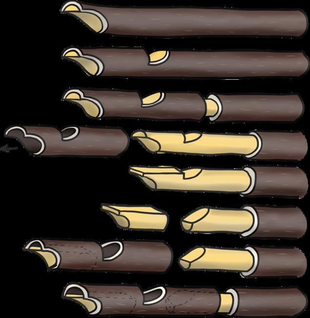 Seljefløyte - KFUK-KFUM-speiderne